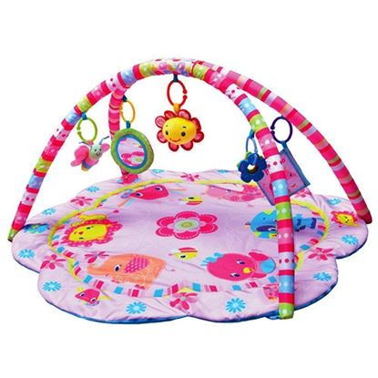 Picture of The Pinky House 3 Way to  Play Baby Gym